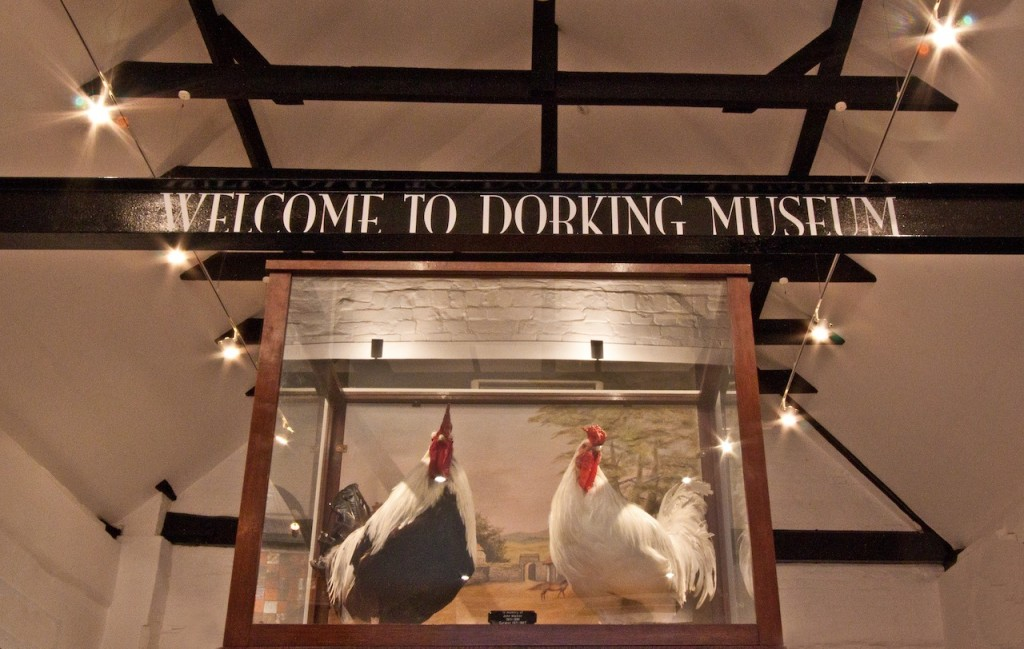 Welcome to Dorking Museum