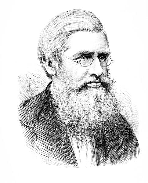 Alfred Russel Wallace - 485px-PSM_V11_D140_Alfred_Russel_Wallace