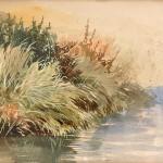 WW Caffyn, Clump of Bushes Near Water