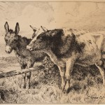 Charles Collins, Cow and Donkey