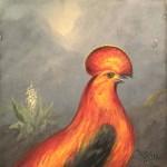 Denham Jordan, Exotic Bird