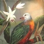 Denham Jordan, Exotic Bird on Branch and Flowers