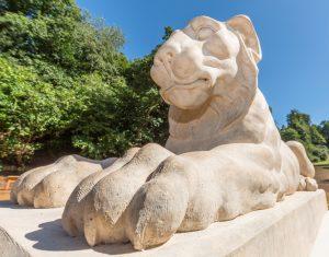 Coady the Lion in situ - Deepdene Trail © MVDC
